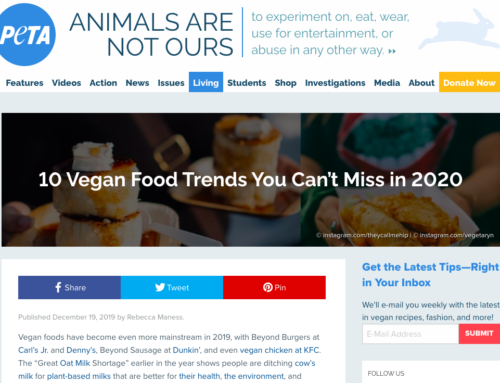 10 Vegan Food Trends You Can't Miss in 2020